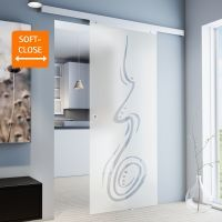 Glasschiebetür 880x2035mm Curved satiniert Komplettset Griffmuschel+Softclose